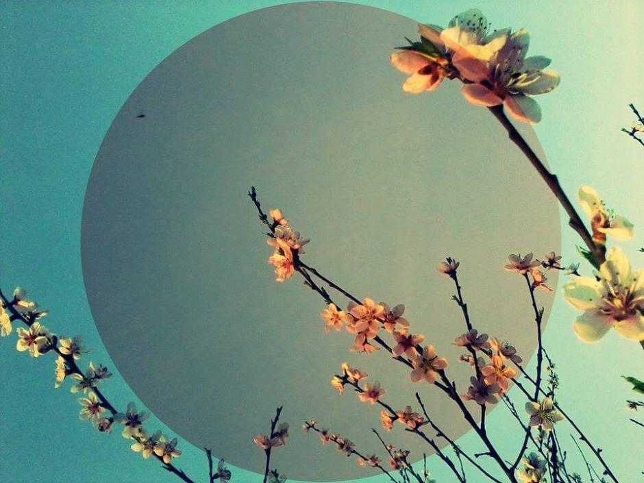 naranča blog, italo calvino, nevidljivi gradovi