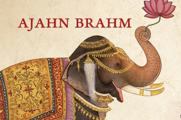 Slonica koja je izgubila sreću, Ajahn Brahm, naranča, naranča blog