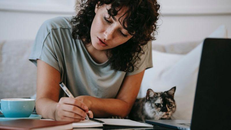Posao putem interneta - što raditi